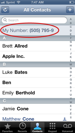 Find your iPhone's phone number